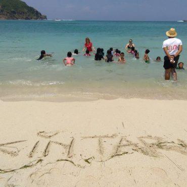 čištění pláží (1)